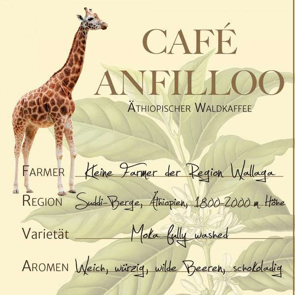 Café ANFILLOO, Äthiopischer Hochlandkaffee